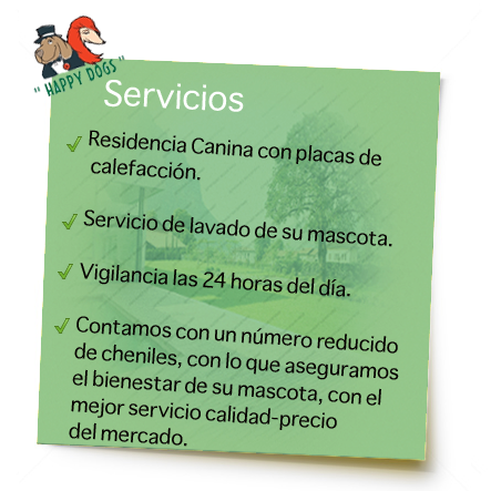 servicios-residencia-canina